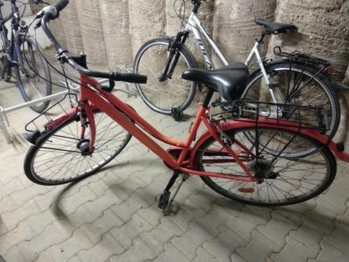 Rotes Damenrad An Bastler Narbendynamo Zu Verschenken In Heilbronn