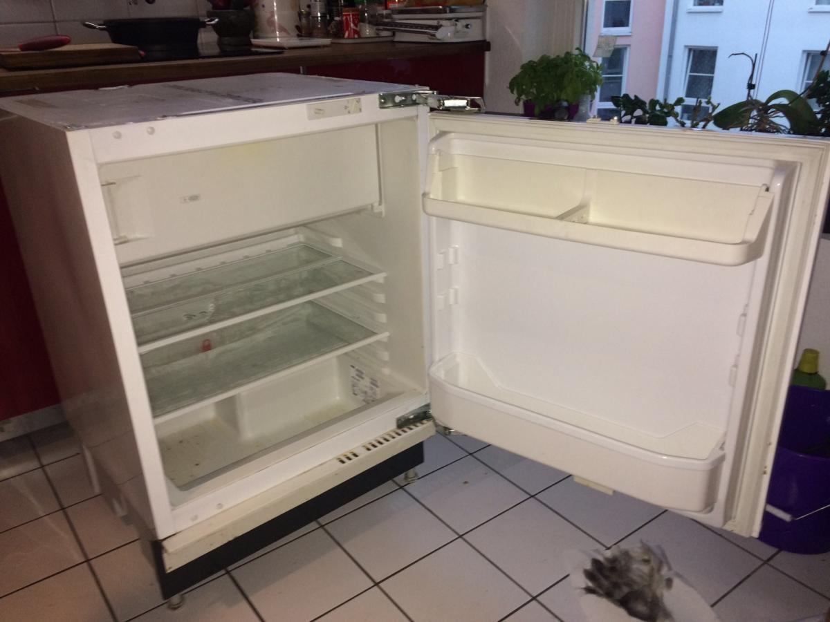 Kleiner Kühlschrank Zu Verschenken : Unterbau kühlschrank zu verschenken zu verschenken in köln