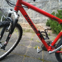 Mountainbike Steppenwolf 1