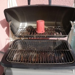 Gas Grill  1